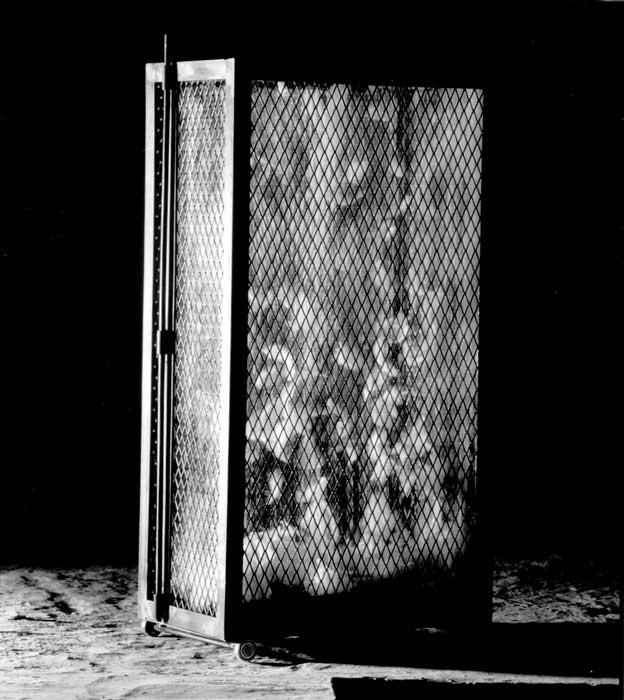 De Valigia, 1997, iron, feathers, glass, motor, 90x50x30 cm