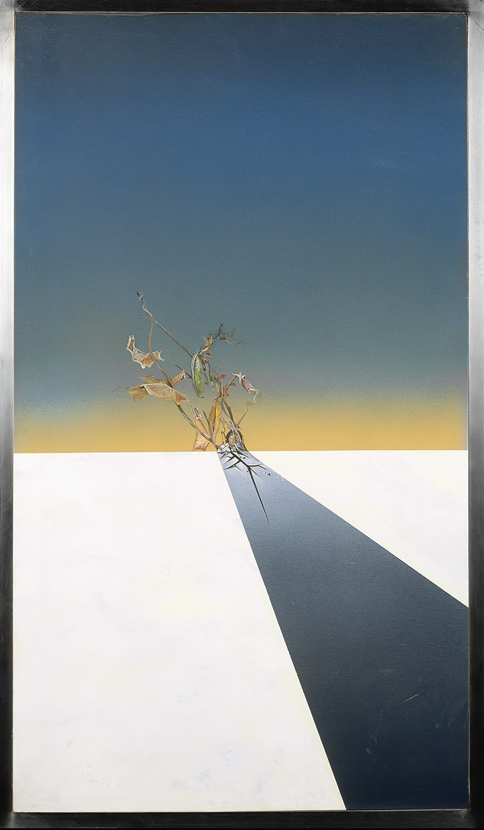 Route et haricot,1984, plywood, acrylic, photo, airbrush, 100X57cm